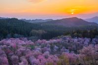 福島県 桜峠 夕陽