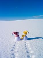 スノーマンと雪原