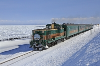 北海道 流氷ノロッコ号と流氷原