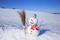 北海道 雪だるまと冬の丘
