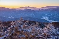 長野県 朝の雪の林と八ヶ岳