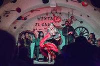 スペイン グラナダ フラメンコショー