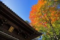 東京都 高尾山・薬王院四天王門