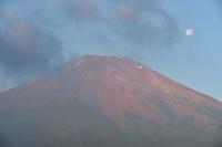 山梨県 北富士演習場より月と富士山