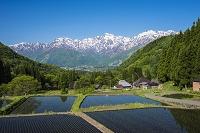 長野県 青鬼集落と北アルプス