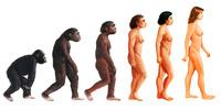 人類の進化 女性