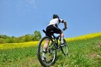 花の高原をマウンテンバイクで走る