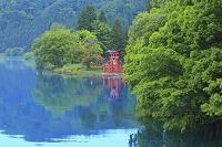 秋田県 田沢湖 湖面と御座石神社の赤鳥居