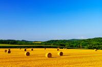 北海道 小麦のロールがある丘の風景