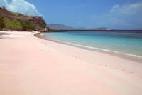 コモド諸島 ピンクビーチ