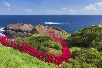 元乃隅稲成神社と青い海