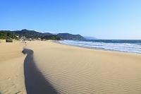 静岡県 伊豆白浜海岸