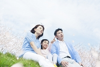 お花見をする笑顔の日本人家族