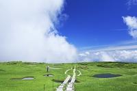 山形県 弥陀ヶ原湿原と湧き上がる雲