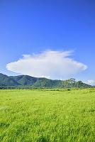 群馬県 中田代の湿原とUFO形の雲