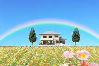 花畑と住宅模型
