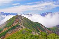 長野県 爺ケ岳中峰から湧く雲と立山右の山