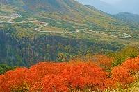 富山県 奥大日岳から立山高原パークライン