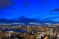 東京都 東京タワー 豊洲 晴海埠頭