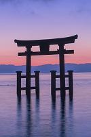 滋賀県 白鬚神社の朝