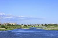 多摩川と調布の街並 東京都 府中市