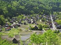 岐阜県 白川郷の合掌造り集落