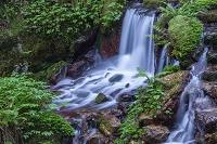 福井県 瓜割の滝