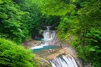 山梨県 西沢渓谷 七ツ釜五段の滝と森