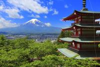 山梨県 新倉山浅間公園の新緑の忠霊塔と富士山