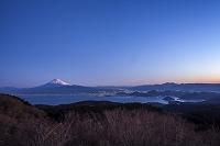 静岡県 達磨山から見る富士山