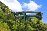 静岡県 新緑の河津七滝ループ橋