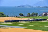 滋賀県 北陸本線 琵琶湖をバックに稔った麦畑を走るEF65牽引SL北...