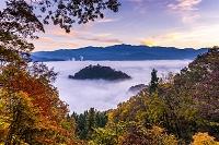 福井県 朝焼けの雲海の越前大野城