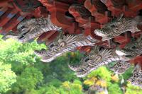 山梨県 北口本宮富士浅間神社 手水舎 龍神装飾