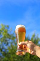 ビールで乾杯 夏の食