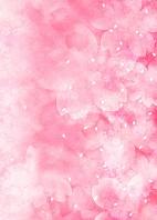 桜の色彩イメージ