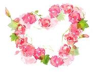 水彩画 薔薇ハート