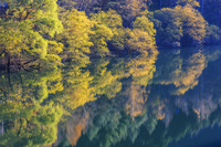 岐阜県 湖面に映る紅葉