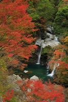 徳島県 大轟の滝と紅葉