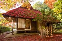 京都府 金福寺
