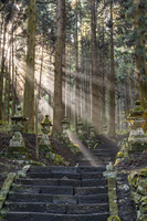 熊本県 上色見熊野座神社の参道
