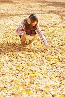 落葉拾いをする若者の女性