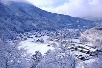 日本 岐阜県 雪の白川郷