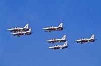 スロバキア空軍アエロL-39アルバトロス練習機の編隊アクロバット