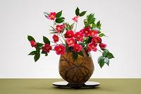 大きな花瓶にいけた椿の花