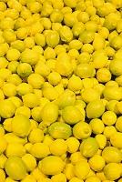 レモン 集合