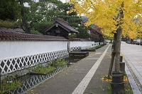 島根県 津和野・秋の殿町通り