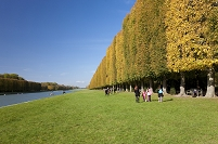 ベルサイユ宮殿 大運河と並木