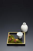 角盆の紅葉と苔と酒器