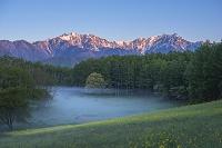 長野県 菜の花畑と中山高原 後立山連峰